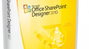 Setting Rights for custom actions using Sharepoint Designer 2010 in Sharepoint online, Office 365